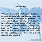 Bible Verses Card - Romans 8:28-30 by EuniceWilkie