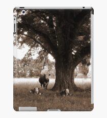 A Good Season, Uralla, Northern Tablelands, NSW, Australia iPad Case/Skin