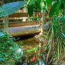 Pond & Footbridge2 (HDR) by ECH52