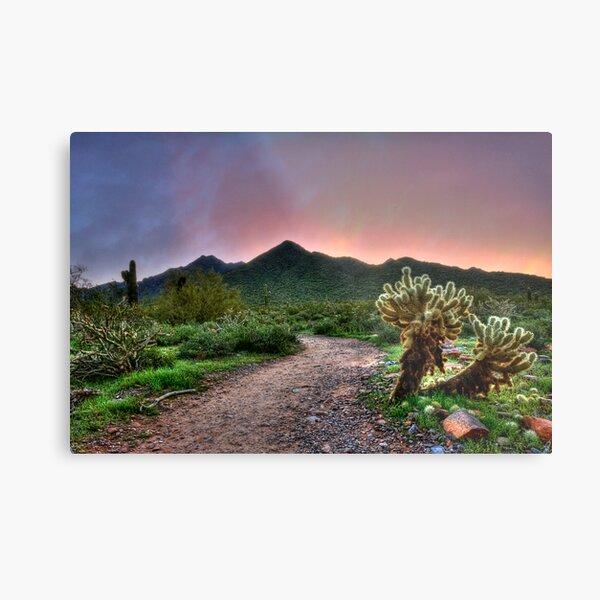 Sunrise Hike Metal Print