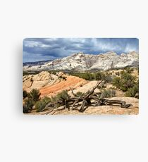 Split Mountain with Dead Wood Canvas Print
