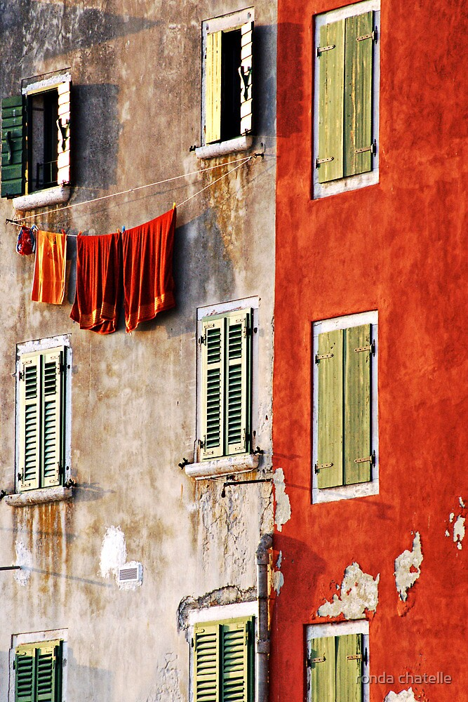 Hung Out To Dry by ronda chatelle