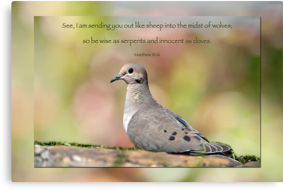 Be wise as serpents and innocent as doves . . . by Bonnie T.  Barry