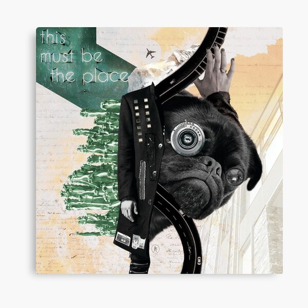 This Must Be the Place Canvas Print
