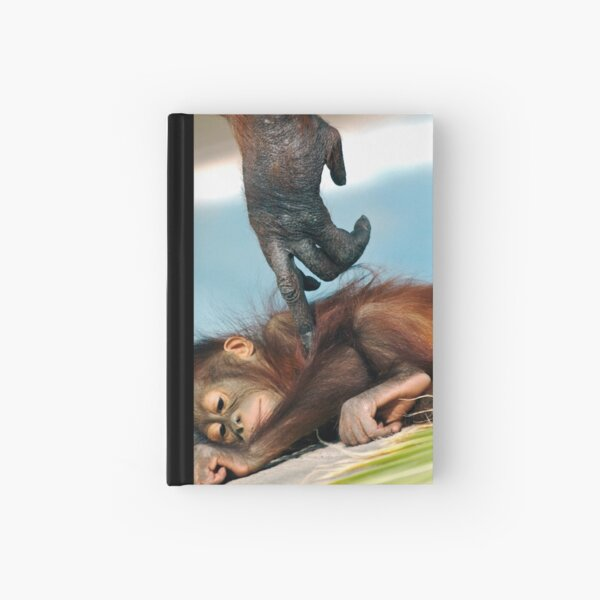 Wake Up Little One Hardcover Journal