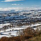 Snow Covered Wensleydale by Reg-K-Atkinson