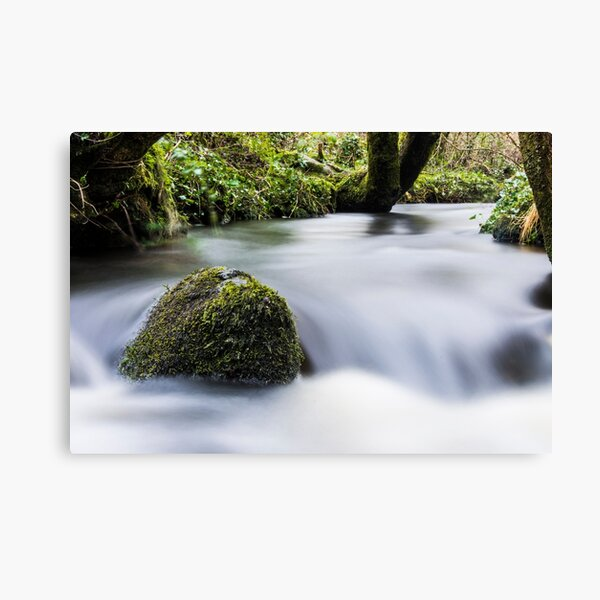 Flowing Water In A Stream Canvas Print