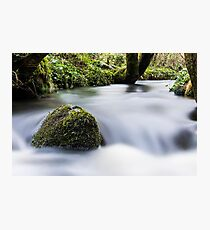 Flowing Water In A Stream Photographic Print