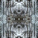 Dance of Icicles by spiritahgraphy