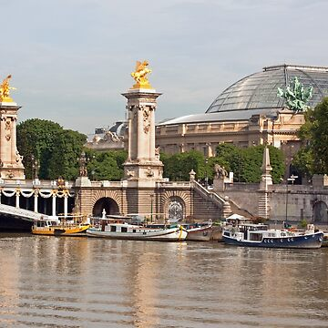 Pont Alexandre III  and Grand Palais - Paris France by Buckwhite