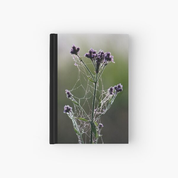 Morning Lace Hardcover Journal