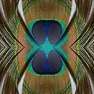 Flash by spiritahgraphy