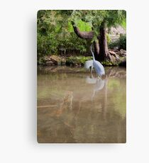 Twin Relfection Canvas Print