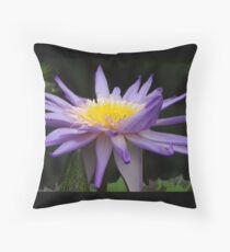 Water lily flower Floor Pillow