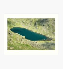 Goats Water From Above Art Print