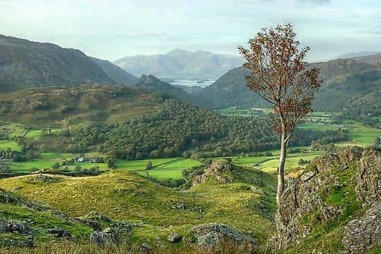 Borrowdale by Jamie  Green