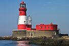 Longstone Lighthouse - Farne Islands, Northumberland by David Lewins