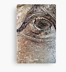 The Great Eye Canvas Print