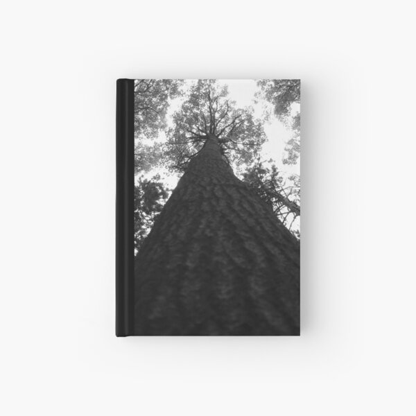 Vertical View Hardcover Journal