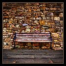 the bench by DARREL NEAVES