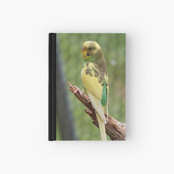 Parakeet #9 Hardcover Journal