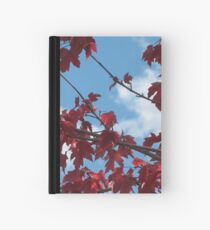 Red, White, and Blue Hardcover Journal