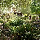 Front Garden Magpie Springs Adelaide Hills Fleurieu Peninsula by MagpieSprings