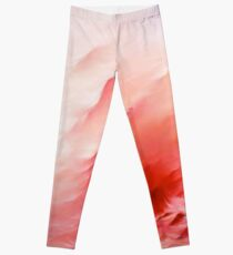 Flamingo's Dream Leggings