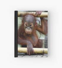 What a Look Hardcover Journal