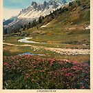 printemps dans les le briançonnais alpes de France by vintagetravel