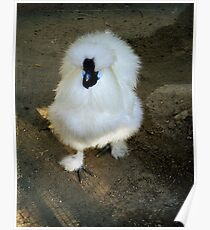 Fluffy Fowl Poster