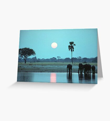 Sunset Drink Greeting Card