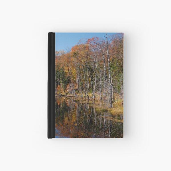 A Beautiful Swamp Hardcover Journal