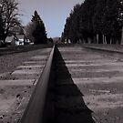 railroad tracks by tego53