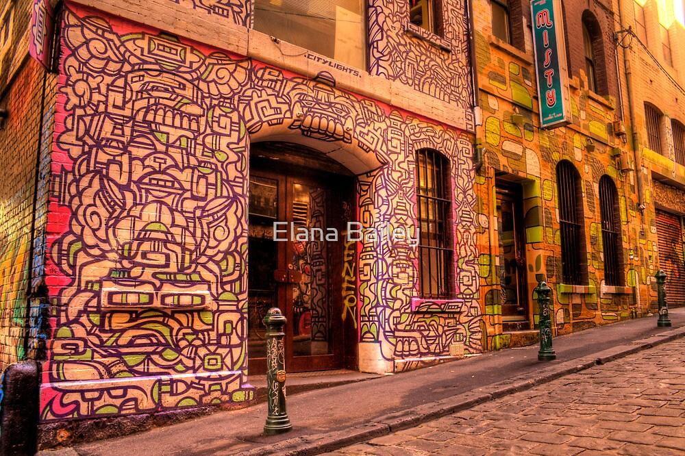 Graffiti in Hosier Lane, Melbourne by Elana Bailey