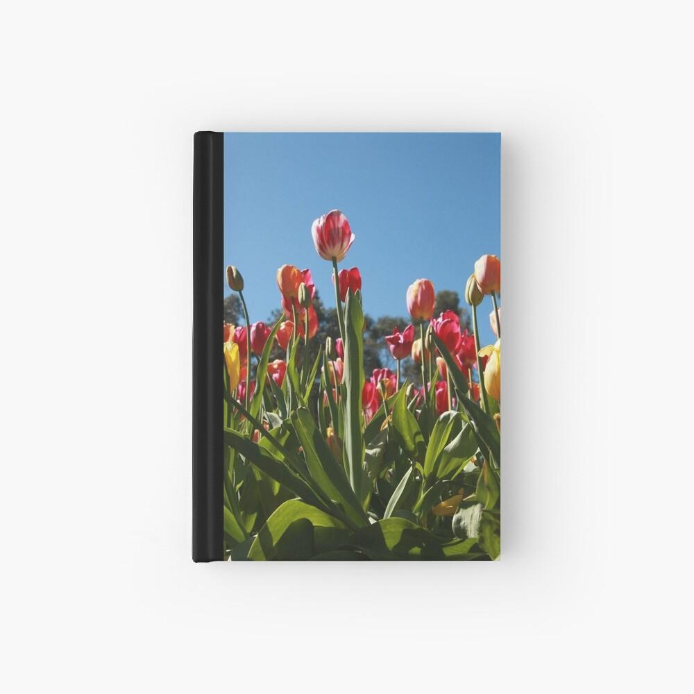 Tulips at Araluen Hardcover Journal
