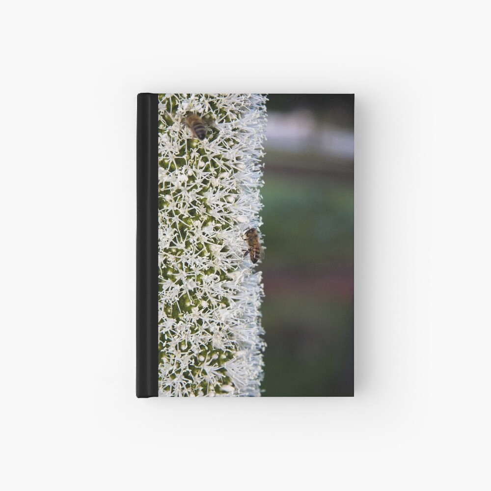 Grasstree flower with bees Hardcover Journal
