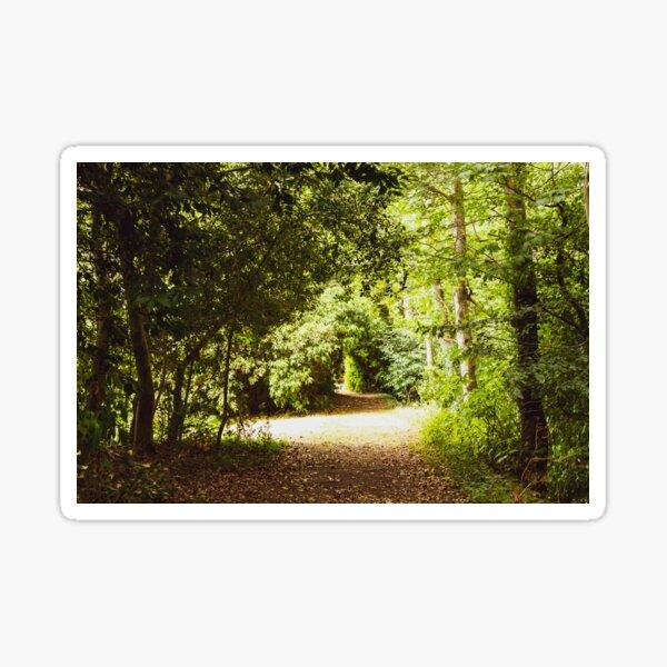 Enchanted Woods Sticker