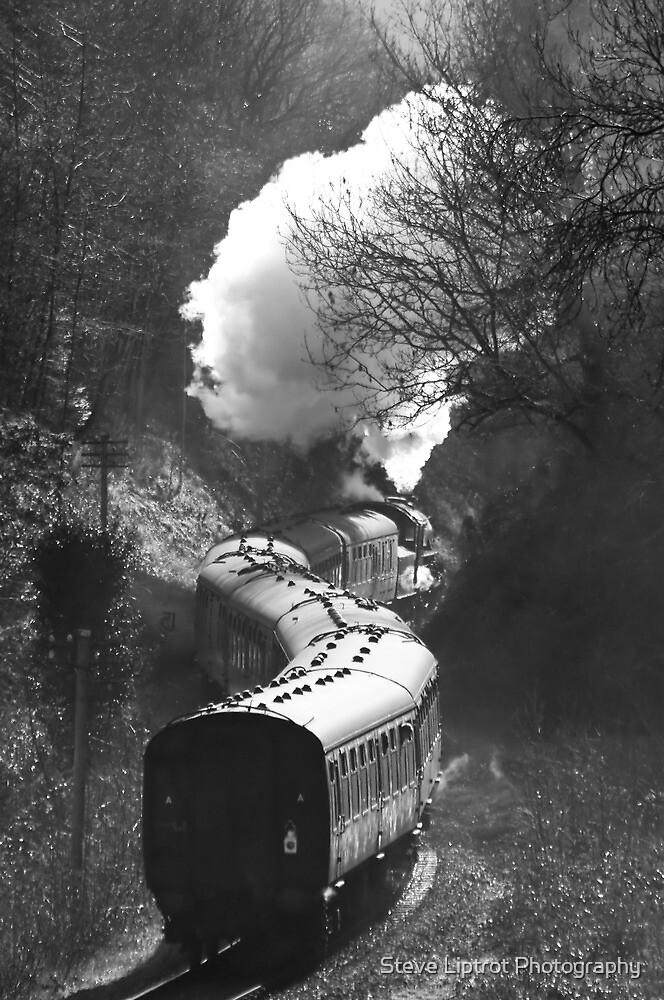 Severn Valley Railway by Stephen Liptrot