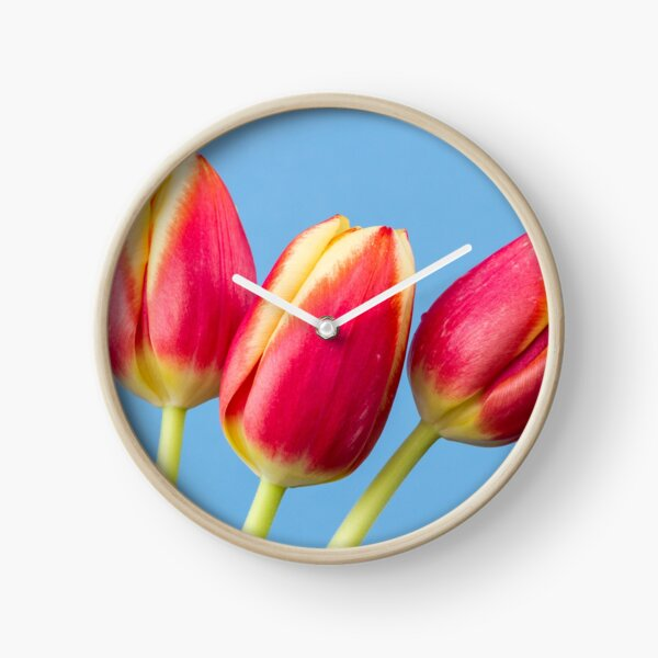 Three Tulips Clock