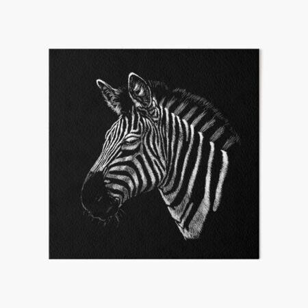 Zebra Portrait Zeichnung Galeriedruck