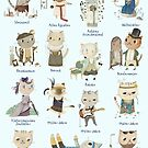 A short History of House Cats - English by Judith Loske