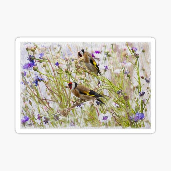 Goldfinches Feeding Sticker