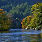 The River Tay, Dunkeld, Perthshire by AlbaPhotography
