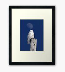 Moon Post Alignment / Snowy Owl Framed Print