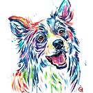 Border Collie Watercolor Painting by Lisa Whitehouse