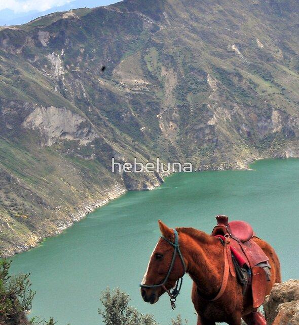 Horse in Quilotoa crater in Ecuador by hebeluna