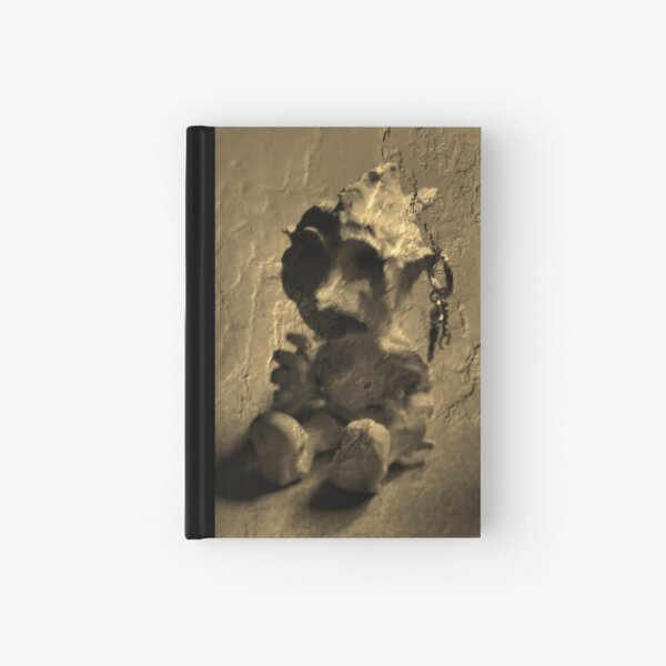 Golem Moderna Hardcover Journal