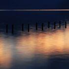 Morning Light ... France by Angelika  Vogel