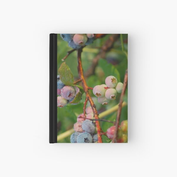 dew covered blueberries Hardcover Journal